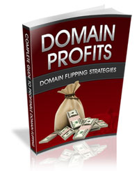 Domain-Profits-DomainSteward.Com